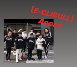 【E-CLIBULL】 ( いーくりぶる)/Acorn (エイコーン)